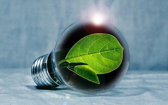 light-bulb-2631864__340